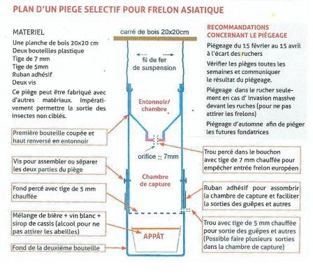 piege a frelon asiatique maison cheap with piege a frelon asiatique maison excellent test de. Black Bedroom Furniture Sets. Home Design Ideas