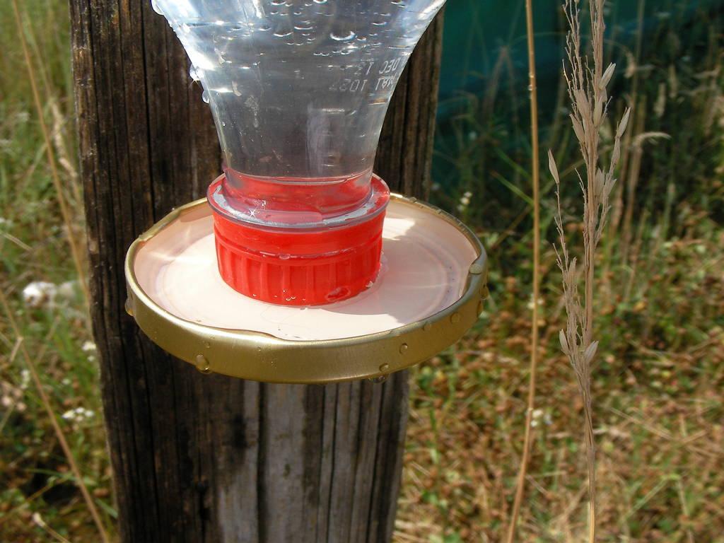 Abreuvoir les amis des abeilles de chaponost - Fabriquer abreuvoir poule ...